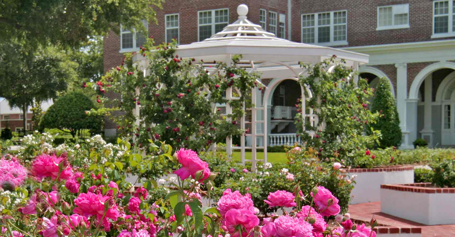 Rose Garden in front of Joseph Reynolds Hall