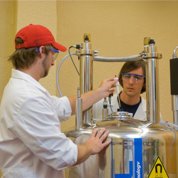 FSC students working in the lab