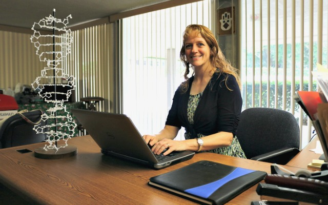 Dr. Nancy Morvillo, back at her desk at FSC preparing for the new year.