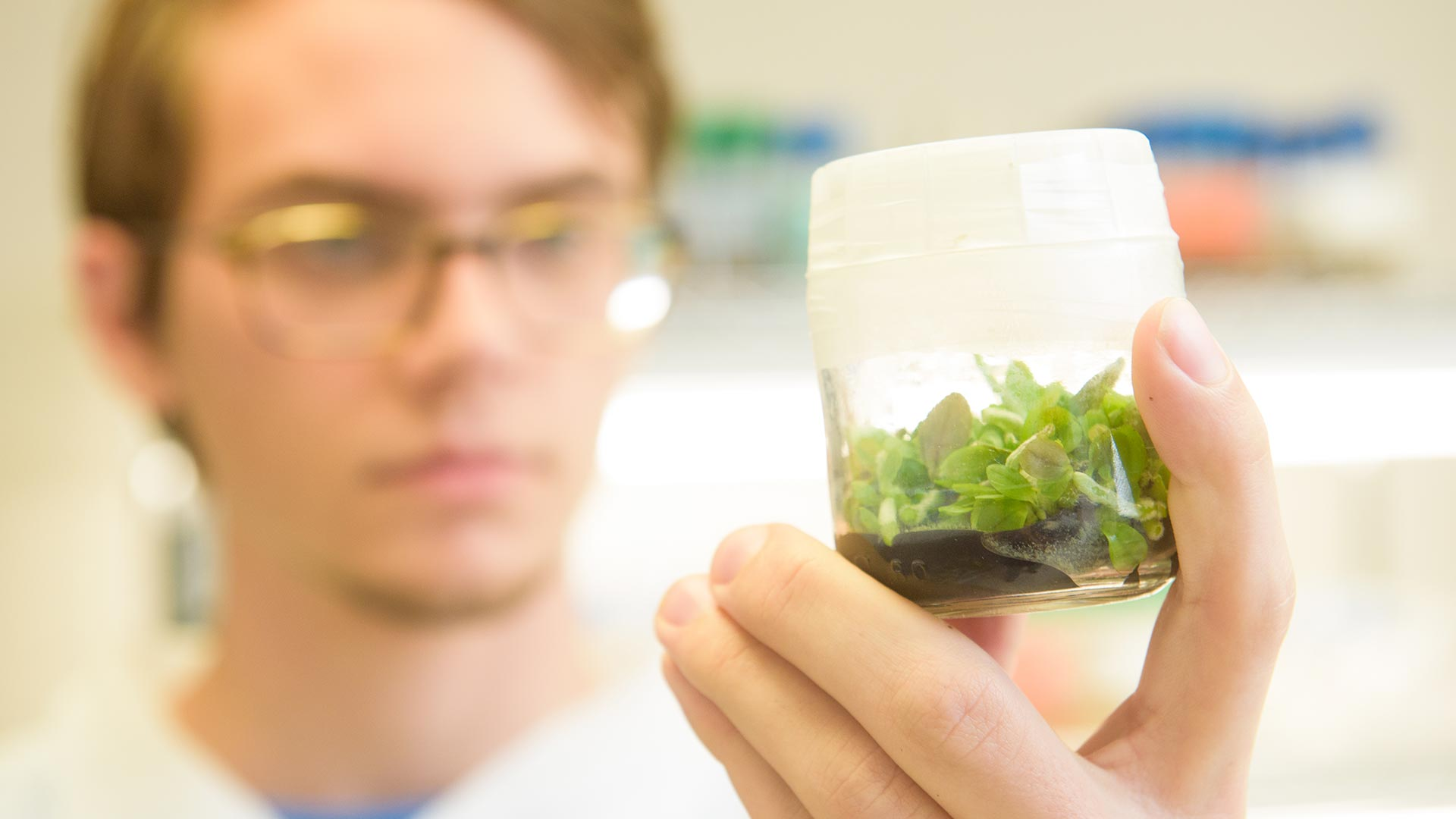 student examining a plant sample