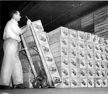 Plant worker stacking up bruce boxes of Florence fruit
