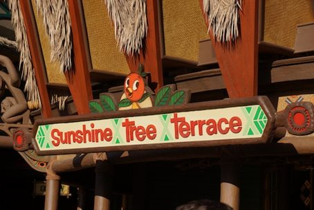 Sunshine-Tree-Terrace-Orange-Bird-sign.jpg